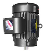MVB-T Motors for Vertical Water Pumps