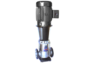 VPC-VPS 20 + NEMA Motor
